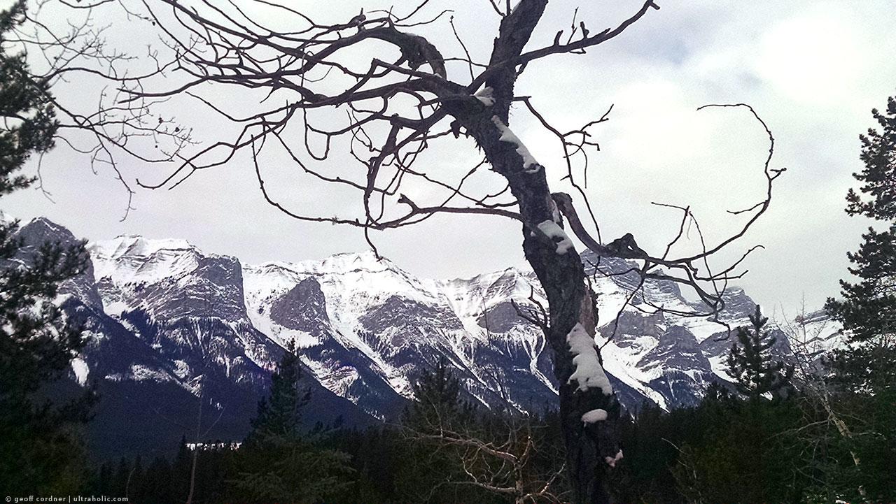 Montane Traverse Trail, Canmore, Alberta